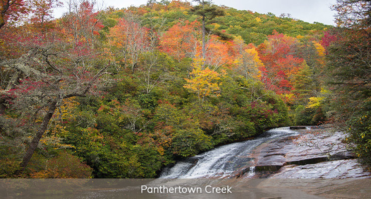 panthertown creek best spots for fly fishing in north carolina landmark realty group