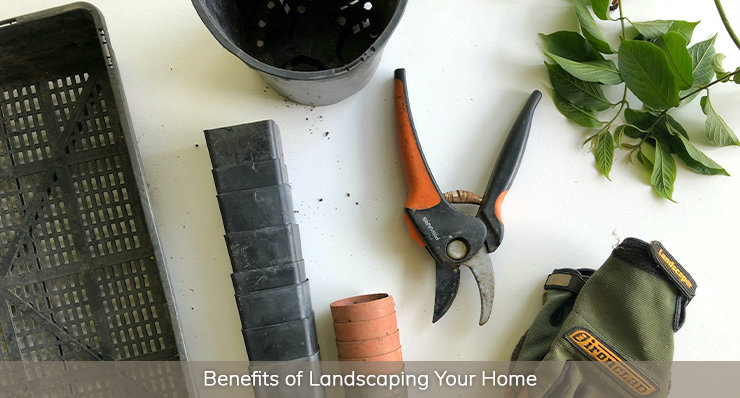 Benefits of Landscaping Your Home