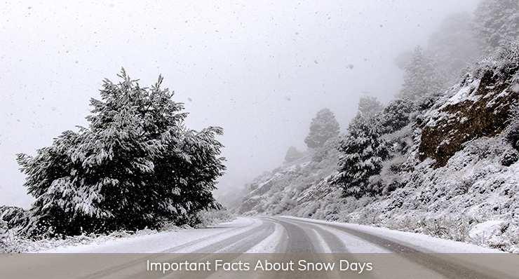 important facts about snow days